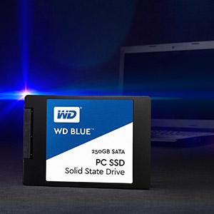 Ổ cứng SSD Western Digital WD Blue - Thương hiệu hàng đầu thế giới
